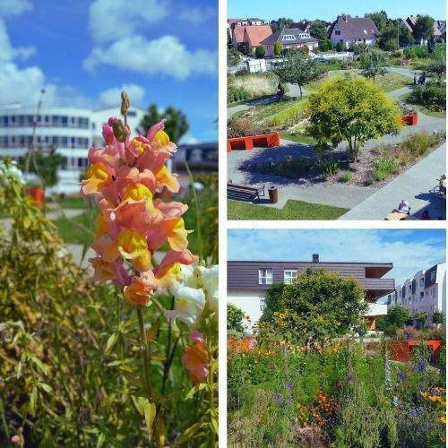 le jardin de la maison bethel